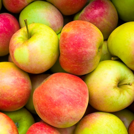 subsist: Crispy red and yellow apples Stock Photo