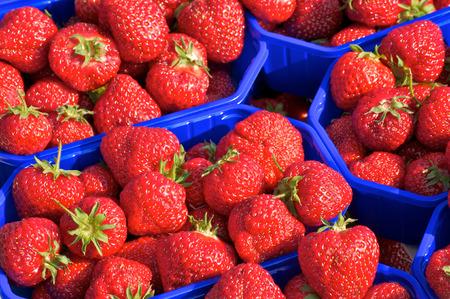 envases de plástico: Fresas frescas en recipientes de plástico de color azul; Frutas rojas de verano Foto de archivo