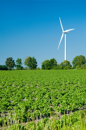 industrialized country: Wind turbine in agriculture landscape with trees on sunny day with and clear blue sky