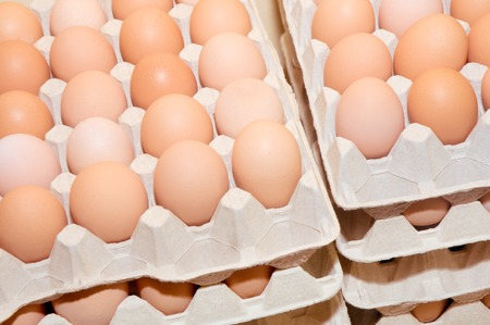 Brown chicken eggs in egg stacked cardboard trays