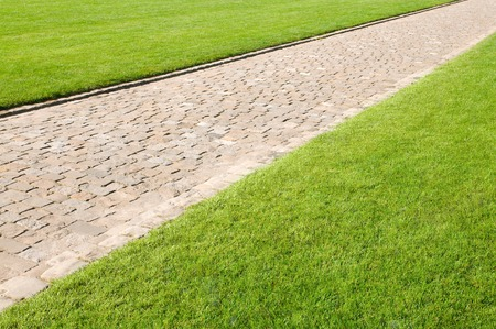 weed: Paved footpath in deep green decorative lawn; Clarity and straightness