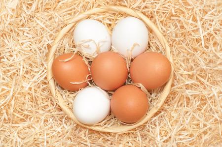 alumnos en clase: Huevos de Pascua en colores naturales; huevos blancos y marrones de gallina en una cesta de mimbre redonda con lana de madera Foto de archivo