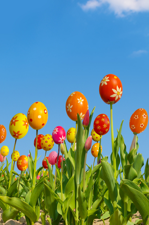 hybridization: Happy easter, funny tulips against blue sky, composing Stock Photo