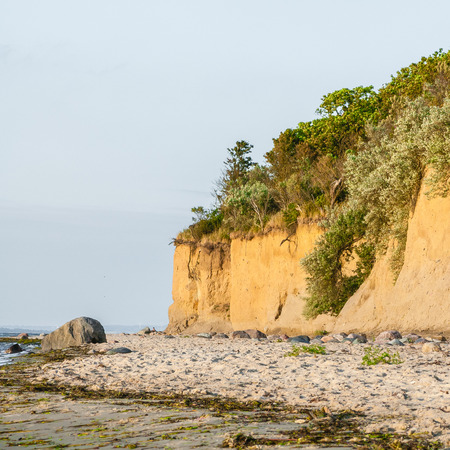 coastal erosion: Coastal erosion at Baltic Sea beach; Coastal landscape with overgrown cliff; Sandy beach with boulders and seaweed