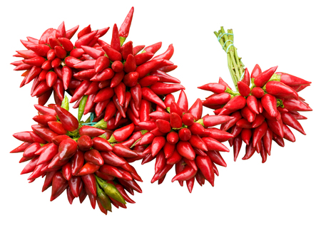 Bundles of red chili peppers on white background; Spicy ingredients for vegetable dishes