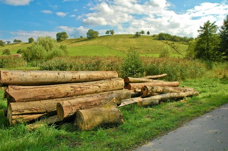 boles: Tree trunks piled up at the wayside; Forestry; Hilly landscape with pile of sawn tree trunks