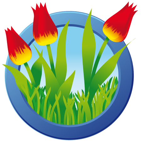 tulips in green grass: Illustration of three red tulips in green grass; Blue round frame with spring flowers; Spring theme; Easter motif