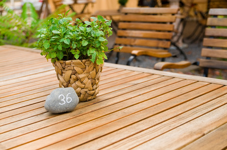 Decorative plant with small stone with tablenumber on wooden table in garden restaurant; Table decoration; Table numbers; Gastronomy Stock Photo