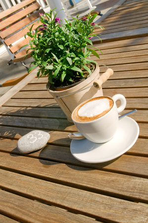 furnishings: Cup of cappuccino and decorative plant on wooden table in garden restaurant; Coffee break in sunshine; Gastronomy