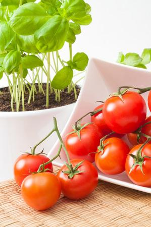 화분 된 바 질 공장 및 빨간 접시 흰 접시; 지중해 음식; 건강한 간식을위한 성분; 허브와 야채