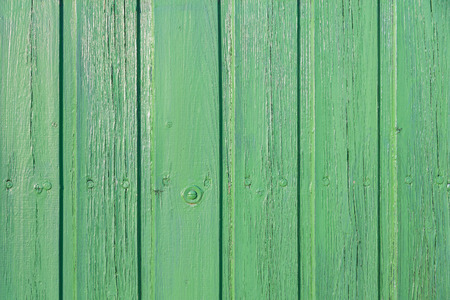 Grüne wall with tongue and groove paneling; Grüner background of wooden boards; Screwed and grün lacquered Wooden planks for background or texture