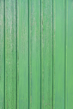 Green varnished wood paneling; Green wooden wall for background or texture; Wall of vertical boards with green paint