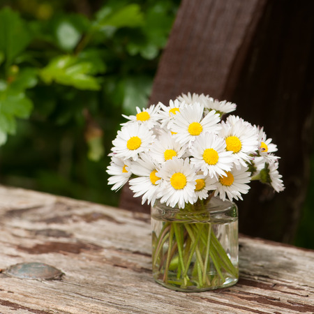 uncomplicated: White wildflowers in glass vase; Bellis perennis; Bunch of daisies in small vase on wooden board; Small bouquet of meadow flowers; Flower greetings