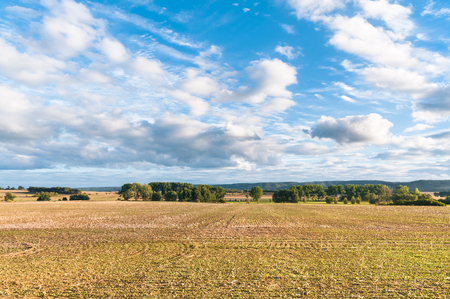 Landscape with empty fields and deciduous trees under cloudy sky in late summer; End of summer; Agricultural landscape; Agricultural area