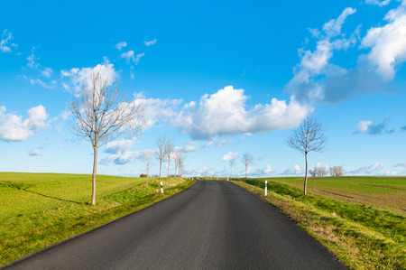 Paved road through meadows and leafless trees along the road on sunny day; Landscape on the Isle of Poel; Asphalted road Standard-Bild
