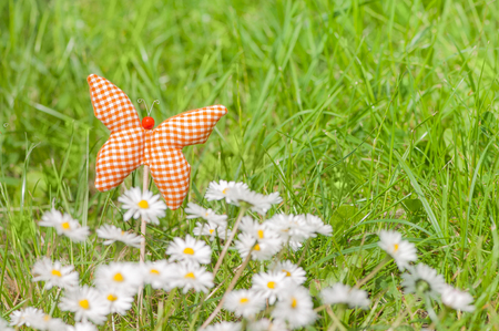 Hand made textile butterfly between daisies against green grass