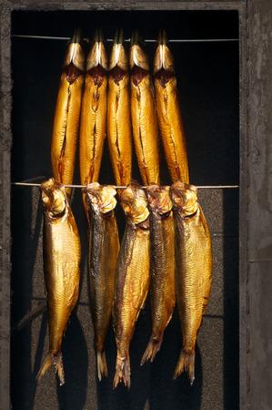 Golden fishes hanging in smoke oven; Fish specialties; Freshly smoked mackerels