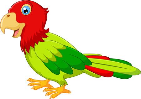 guacamaya caricatura: Historieta del pájaro Guacamayo Vectores