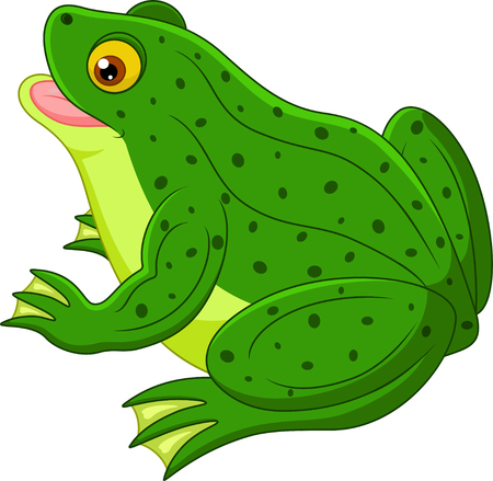 lily pad: Frog cartoon Illustration