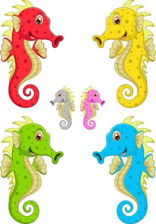 sea horse: Sea horse cartoon