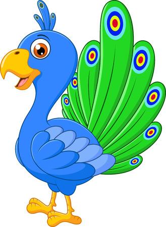 specie: Peacock cartoon Illustration