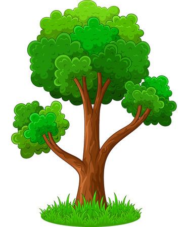 parken: Grüner Baum-Cartoon Illustration