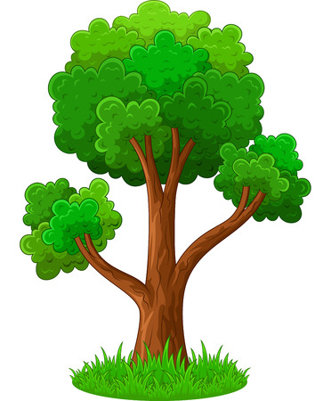 on the tree: Green tree cartoon