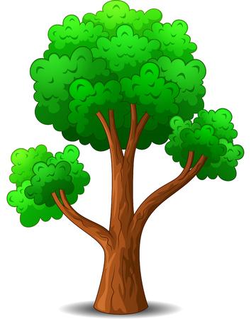 big tree: Tree cartoon