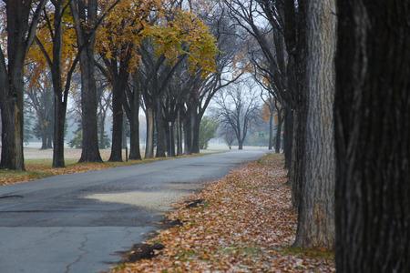 winnipeg: Empty Road Stock Photo