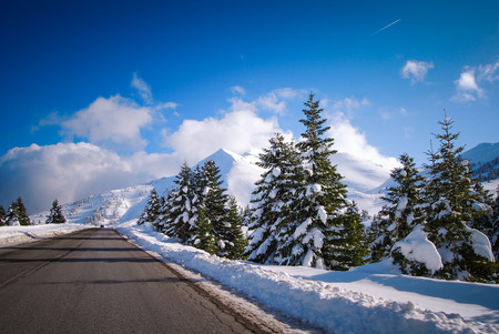 Road to the snow forest Banco de Imagens