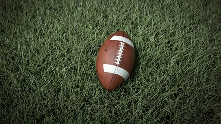 A close-up of the American ball on the field 写真素材