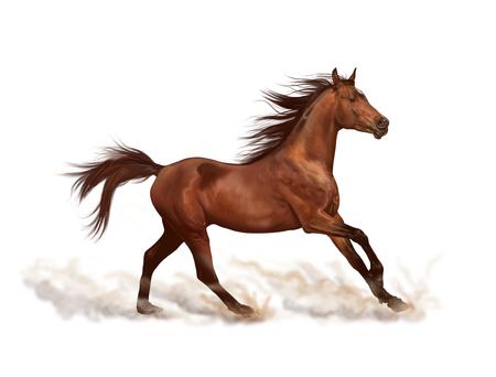 Brown horse illustration, digital painting