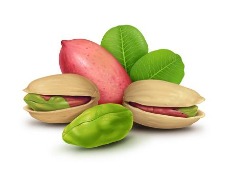 Pistachio nuts illustration, digital painting