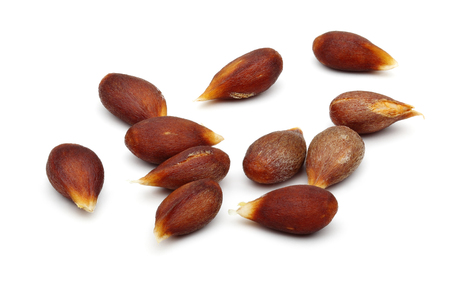 Apple seeds isolated on white background