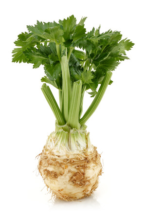 Fresh celery stalks and celeriac isolated on white background. Studio shot.