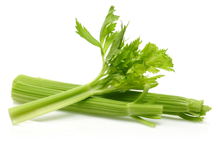 Fresh celery stalks isolated on white background. Studio shot.