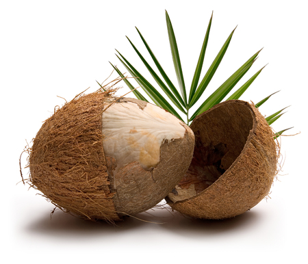 Coconuts with leaves isolated on white background. Studio shot