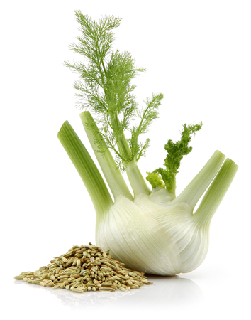 Fresh fennel bulb and dried fennel seeds isolated on white background Stok Fotoğraf - 115225380