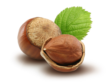 Hazelnuts and leafs isolated on white background Stok Fotoğraf