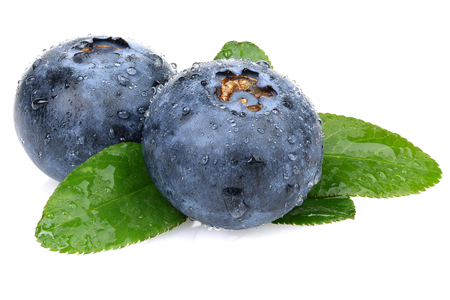 Fresh blueberries with leaves isolated on white background Imagens