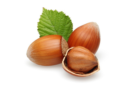 Hazelnuts and leaf isolated on white background Stok Fotoğraf - 115719499