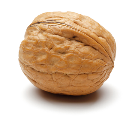 Single whole walnut isolated on white background Reklamní fotografie