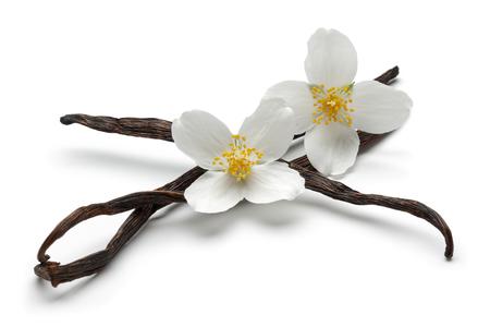Bâtons de vanille avec des fleurs de jasmin isolés sur fond blanc