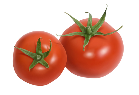 Fresh tomatoes isolated on white background Stock Photo