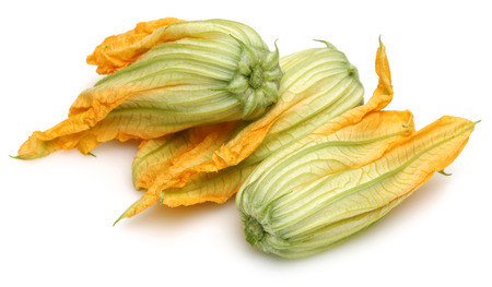 Squash Blossoms isolated on white background
