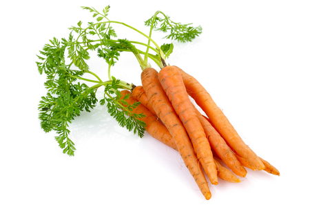 Fresh carrots with leaves isolated on white background 写真素材