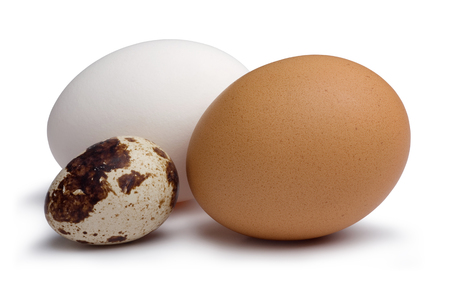 Chicken and quail eggs isolated on white background 写真素材