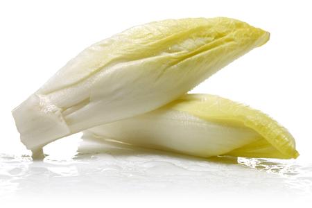 Fresh endive isolated on white background