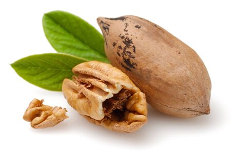 Pecan nuts and leaves isolated on white background