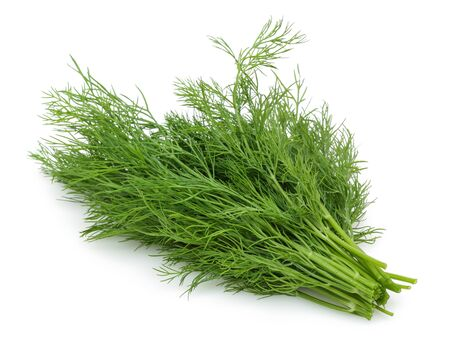 Bunch of fresh green dill isolated on white background